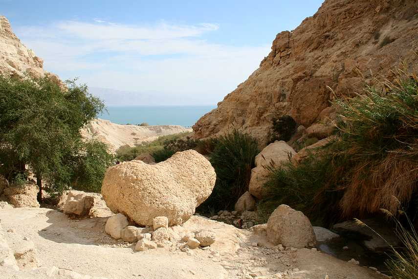заповедник Эйн-Геди - оазис в пустыне