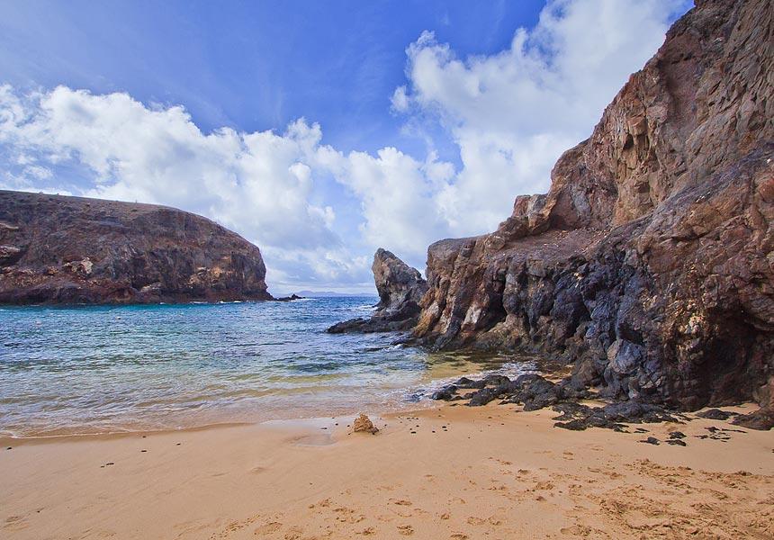 отдых на Канарских островах среди дикой природы