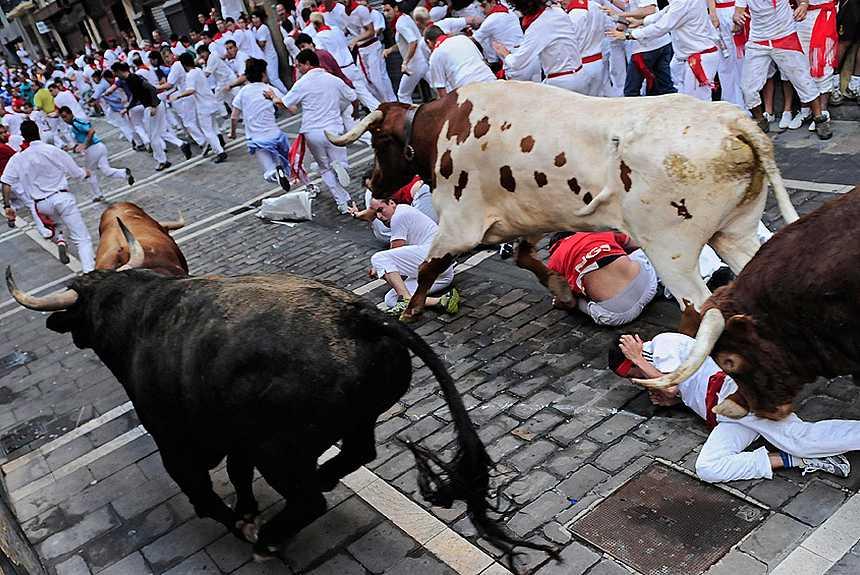 бег с быками - любимое развлечение жителей Помплоны