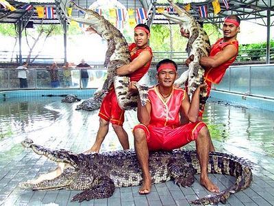 Крокодиловая ферма Таиланд