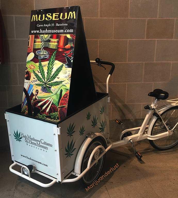 где нахрдится музей марихуаны в барселоне