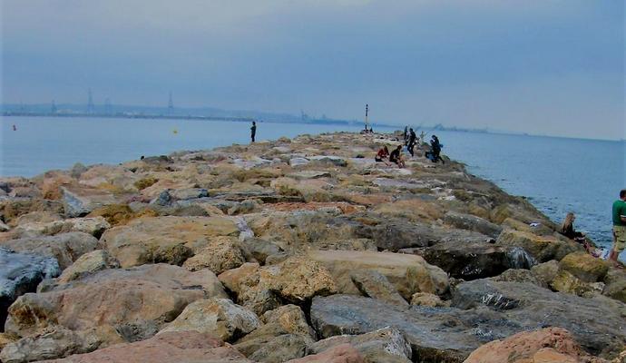 пляж Плайя де Педрегалехо в Малаге