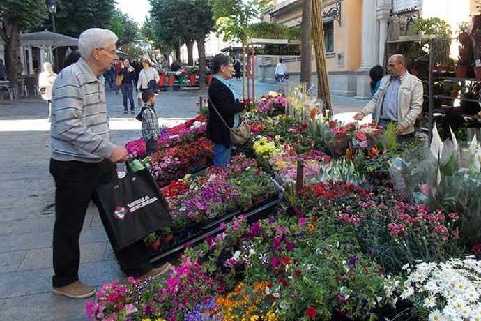Цветочный рынок на Rambla de la Llibertat
