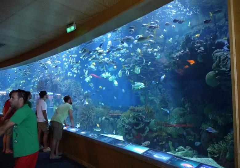 valencia oceanografico trpical seas